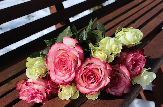 růžové a bílé růže